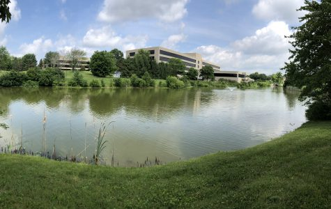 Pond & Building panoramic 1